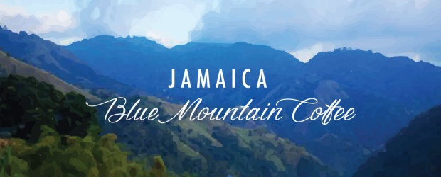 aroma-ridge-blue-mountain-coffee