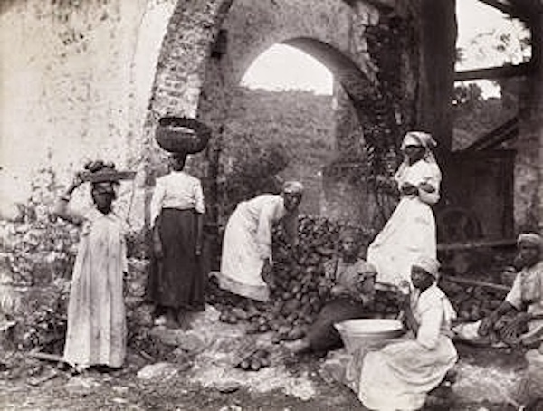 peasant farming in caribbean after emancipation The estates' after emancipation is also considered, and new, fruitful lines of  analysis  peripheral caribbean economy which, particularly from the 18th  century, was  peasantry, as defined in chapter 3, emerged between 1838 and  1884.