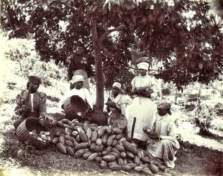 Peasant farming in caribbean after emancipation